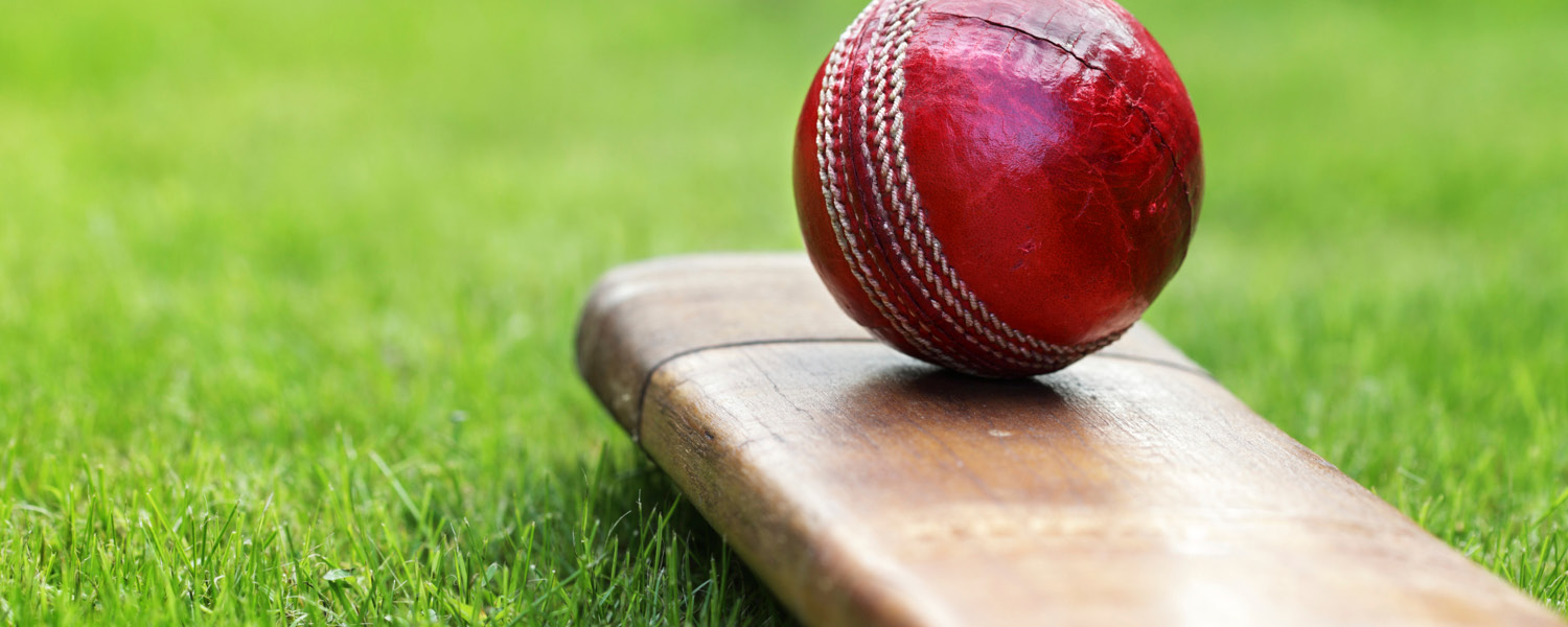 Past and present cricket stars set to hit Ararat in February