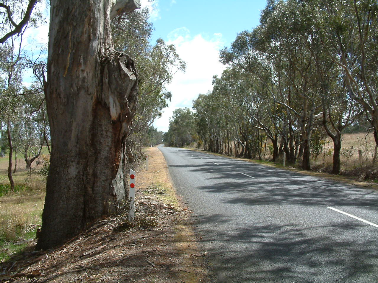 Council forms Rural Roads Group