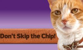 Microchipping Day - Pomonal - 2.00pm