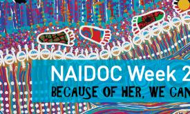 NAIDOC Week - Bush Foods