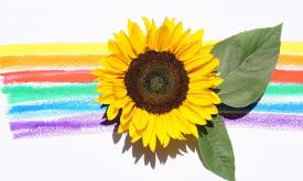 Create Your Own Sunflowers with Ararat Gallery